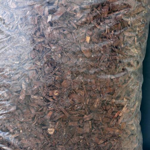 Мулч от иглолистни дървета